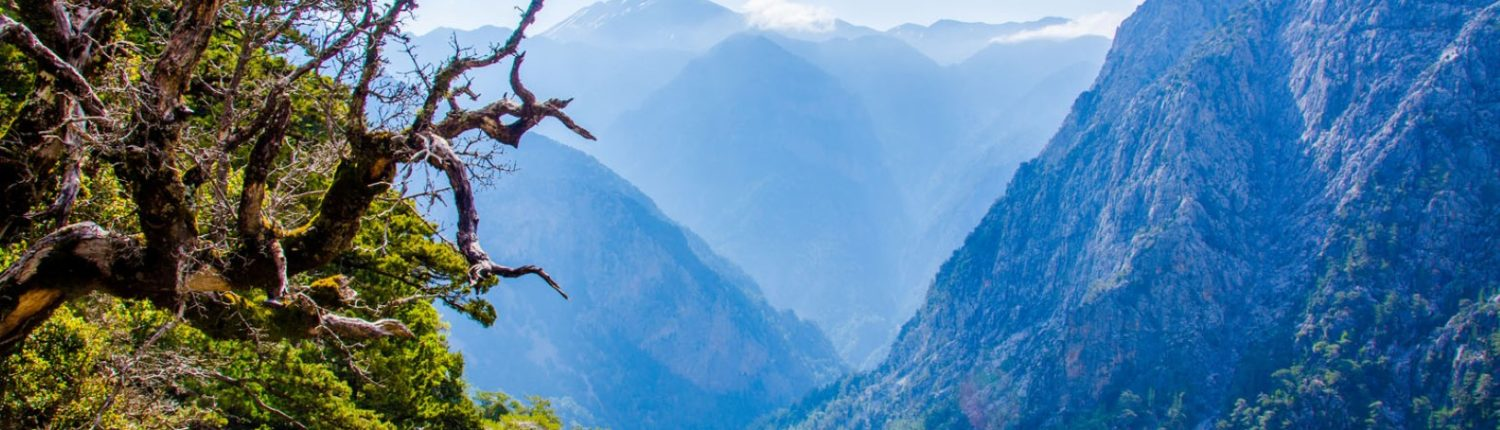 Samaria Gorge Excursion with Taxi Or mini Coach by Chania Transfer Services
