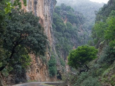 Therisso Gorge Excursion with Taxi Or mini Coach by Chania Transfer Services